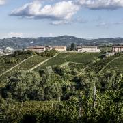 Serra Masio Pinot Nero