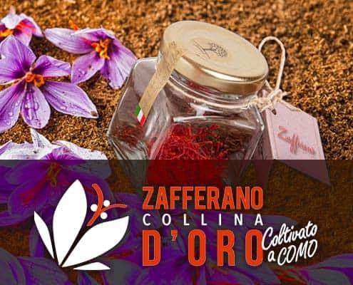 Zafferano Collina d'Oro